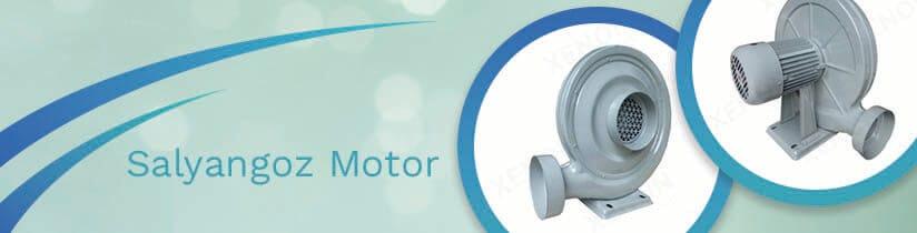 Salyangoz Motor